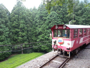 大井川鉄道井川線のトロッコ列車