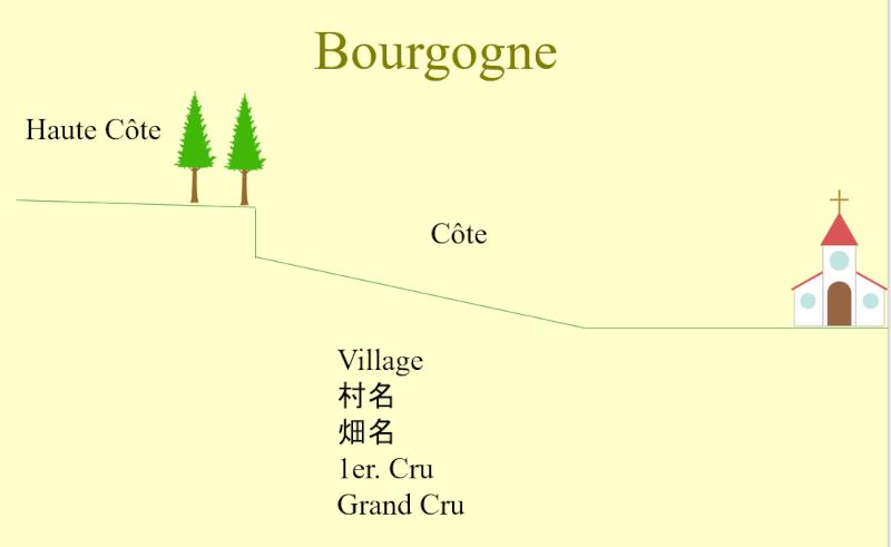 ブルゴーニュ産地名の地形的説明図